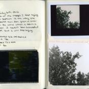 July 6, 2012