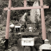 Japan digital 1