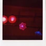 sx-70_779_film001