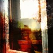 the-window-box