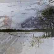 Wild river prairie restoration