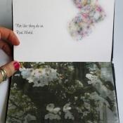 Spring_book_page_8_JesLee