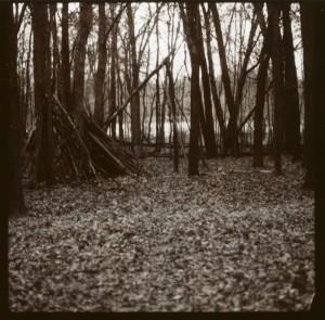 November_2011002