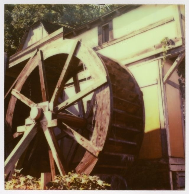 Instant photos from the Renaissance festival