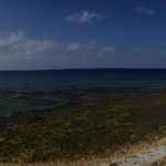1/5/15 - Sea Wall